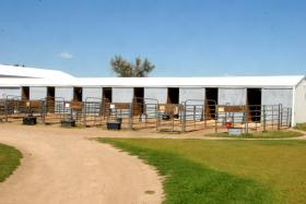 Stalls with Runs